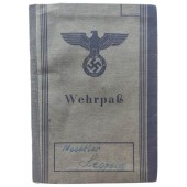 The Wehrpass issued to a person who started his military career in late March 1945