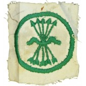 Blue division in Wehrmacht breast patch for member of falange