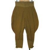 RKKA officer's breeches for artillery or armored troops.
