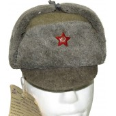 Red Army experimental winter hat with visor, model 1941, Rare.