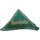 Landjahr Jagergrün sleeve triangle for the HJ
