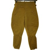 HJ-DJ brown leader's trousers.