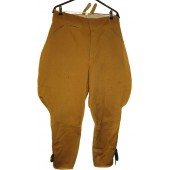 SA DER NSDAP COTTON BREECHES