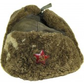 Red Army/RKKA. Soviet winter hat Ushanka