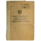 Austrian passport of the period of allied occupation