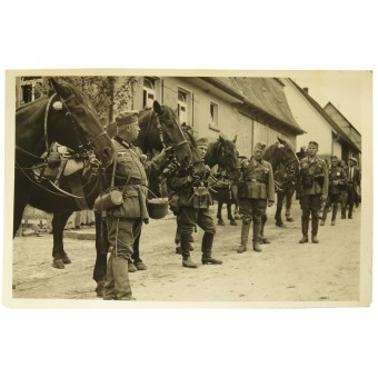 Wehrmacht cavalry soldiers with horses.. Espenlaub militaria