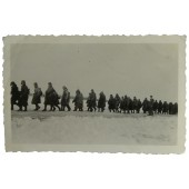 A column of Soviet POWs in winter of 1941 year