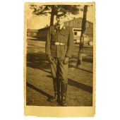 Portrait of Luftwaffe soldier in strange tunic and visor hat without Sturmband