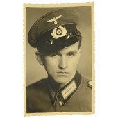 Portrait photo of Wehrmacht soldier in dress uniform and visor cap