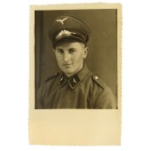 Luftwaffe engineering construction troops private in a visor cap