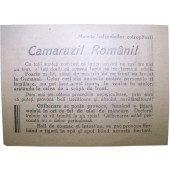 Soviet Leaflet for Romanian soldiers. Camarazi Romani. Kurland Pocket!