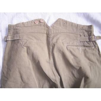 SA of NSDAP Diensthose/trousers.. Espenlaub militaria