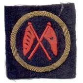 M43 NAVY arm patch